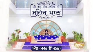 Angg  446 to 456 - Sehaj Pathh Shri Guru Granth Sahib | Dhadrian Wale
