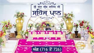 Angg  716 to 726 - Sehaj Pathh Shri Guru Granth Sahib Punjabi | Bhai Ranjit Singh Dhadrianwale
