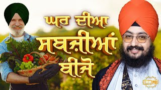 Plant vegetables in your Homes | DhadrianWale