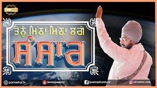 POEM - Tenu Mitha Mitha Lagge Sansar | Bhai Ranjit Singh Dhadrianwale