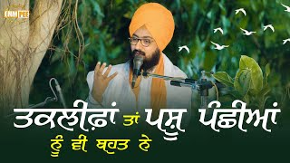 Even birds and animals have problems | Bhai Ranjit Singh Dhadrianwale