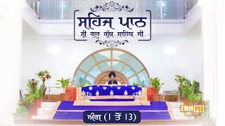Sehaj Pathh Shri Guru Granth Sahib Angg 1 - 13 | DhadrianWale