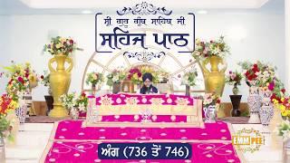 Angg  736 to 746 - Sehaj Pathh Shri Guru Granth Sahib Punjabi | Bhai Ranjit Singh Dhadrianwale