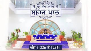 Angg  1226 to 1236 - Sehaj Pathh Shri Guru Granth Sahib Punjabi Punjabi | Bhai Ranjit Singh Dhadrianwale