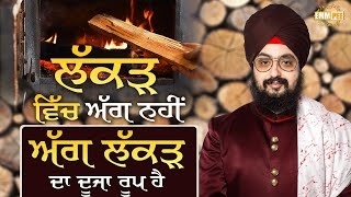 Fire is Another Form of Wood | Bhai Ranjit Singh Dhadrianwale