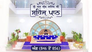 Angg  846 to 856 - Sehaj Pathh Shri Guru Granth Sahib Punjabi Punjabi | Bhai Ranjit Singh Dhadrianwale